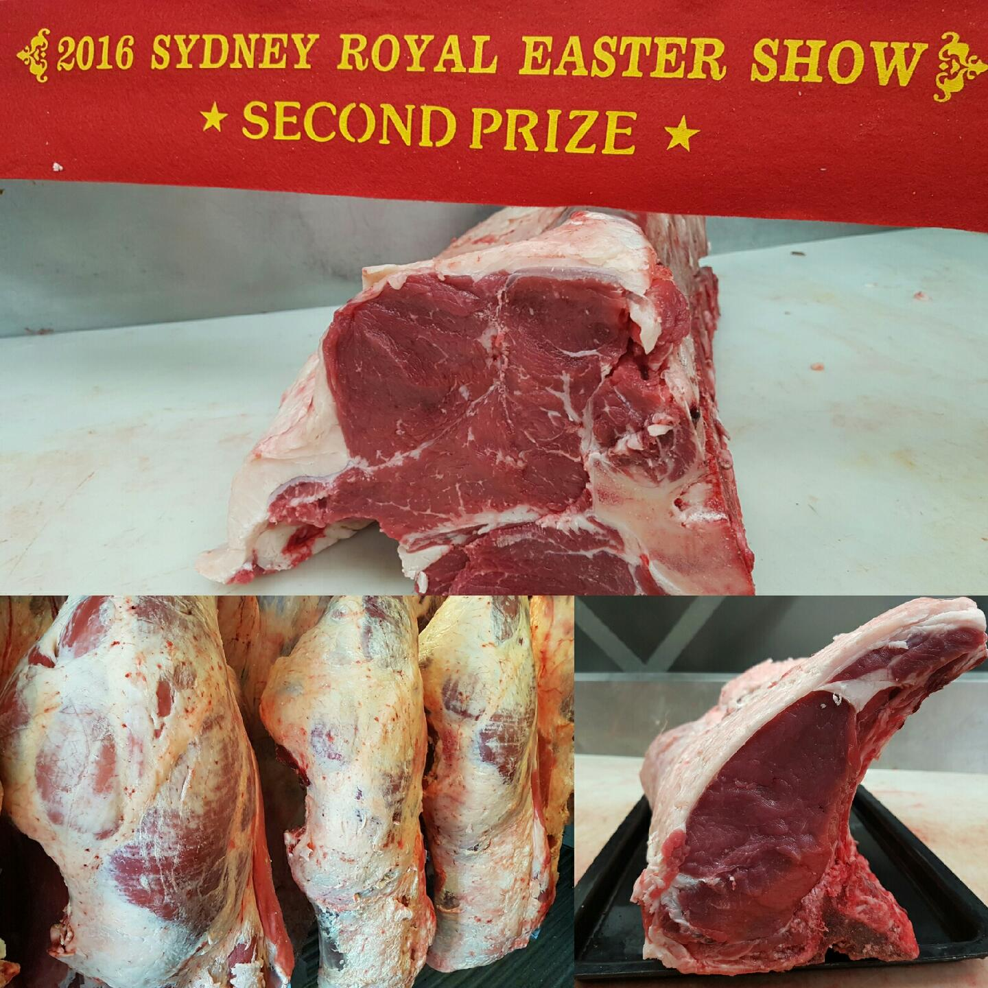 2016 Easter show bodies Colage